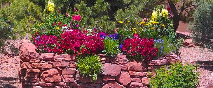 sedona-gardener-desertscape